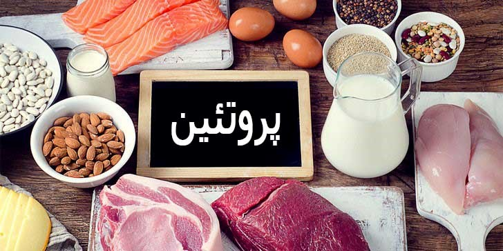 مواد غذایی حاوی پروتئین زیاد